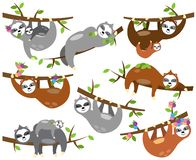 Vector Collection of Cute Sloths in Different Positions and with Babies stock illustration