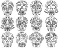 Vector Collection of Doodle Day of the Dead Skulls. Or Sugar Skulls Royalty Free Stock Photo