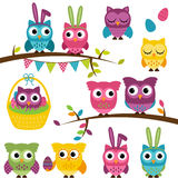 Vector Collection of Easter and Spring Themed Owls Stock Photos