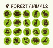 Vector collection of flat cute animal icons isolated on white background. Forest animals and birds symbols. Hand drawn emblems. Perfect for logo design Royalty Free Stock Photos
