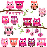 Vector Collection of Girl Baby Shower Themed Owls royalty free illustration