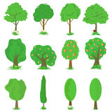 Vector collection of green trees isolates on white background. Set of abstract stylized trees and grass vector illustration