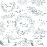 Vector collection of hand drawn design elements and objects. Vintage floral elements. Wedding style. Linear sketch wedding elements for invitation or logo, with Stock Photos