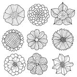 Vector collection of hand drawn flowers. Set of vector flowers for your design stock illustration