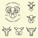 Vector collection of illustrations of farm animals icons in linear style isolated royalty free illustration