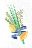 Vector collection of labels and elements for Sukkot (Jewish Trad Royalty Free Stock Photo