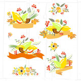 Vector collection of labels and elements for Sukkot Royalty Free Stock Photography