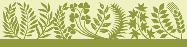 Leaf design Royalty Free Stock Images
