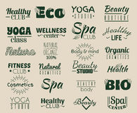 Vector collection of logo and labels, badges for healthy life with decorative elements. Royalty Free Stock Photo