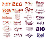 Vector collection of logo and labels, badges for healthy life with decorative elements. Stock Photography
