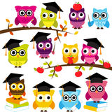 Vector Collection of School Themed Owls Stock Photography