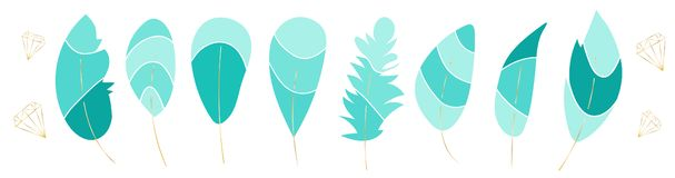 Vector collection,set of beautiful feathers. Soft colors. Turquoise shades elements. Golden contours of diamonds. vector illustration