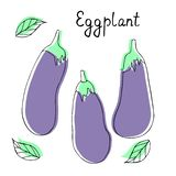 Vector collection with silhouette of eggplants. Cute cartoon vegetables vector illustration