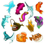 Vector collection of tropical fishes  Royalty Free Stock Image
