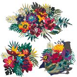 Vector collection of tropical plants and flowers bouquets and hand painted texture stock illustration