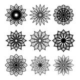 Vector collection of unusual flowers. Set of unusual flowers for your design vector illustration