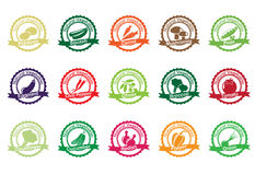 Vector collection: vegetable icons Royalty Free Stock Photos