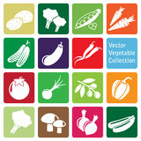 Vector collection: vegetable icons Royalty Free Stock Photo