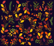 Vector Collection of Vintage Style Autumn or Fall Flowers Royalty Free Stock Images