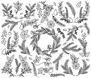 Vector Collection of Vintage Style Hand Drawn Christmas Holiday Florals Stock Photo