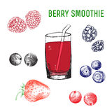Vector color berry smoothie in glass. Bright hand draw illustration. sketch style Stock Photo