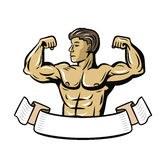Vector color bodybuilder. Showing muscles on white background Royalty Free Stock Photos