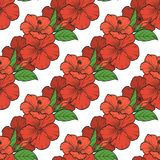 Vector color bouquet of hibiscus flowers. Seamless pattern, sketch art Royalty Free Stock Images