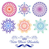 Vector Color Floral Mandala isolated on white Stock Images
