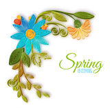 Vector color flower branch in quilling technique Royalty Free Stock Images