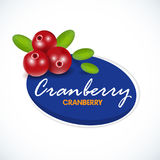 Vector color illustration of cranberry. Cranberry label template. Cranberries isolated icon. Vector illustration for pattern etc. Vector color illustration of Stock Photos