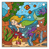 Vector color illustration(little mermaid and sea world) Royalty Free Stock Photos