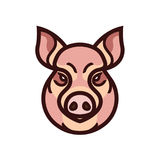 Vector color image of swine or pig head. Mascot emblem Stock Photos