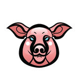 Vector color image of swine or pig head. Mascot emblem Stock Photography