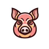 Vector color image of swine or pig head. Mascot emblem Stock Image