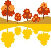 Autumn trees on landscape in the mirror. Stock Photos
