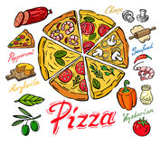 Vector color pizza. Icon on white background Stock Image