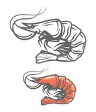 Vector color prawn. Icon on white background Royalty Free Stock Images