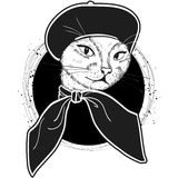 Vector color set of elegant cat woman face. Vector color sketch of elegant cat woman face with beret and scarf Royalty Free Stock Photography