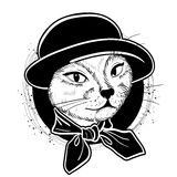 Vector color set of elegant cat woman face. Vector color sketch of elegant cat woman face with hat and scarf Stock Images