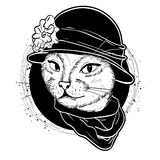 Vector color set of elegant cat woman face. Vector color sketch of elegant cat woman face with hat and scarf Royalty Free Stock Photos