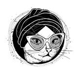 Vector color set of elegant cat woman face. Vector color sketch of elegant cat woman face with hat and scarf Stock Photos