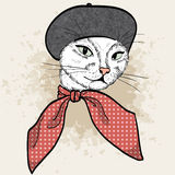 Vector color set of elegant cat woman face. Vector color sketch of elegant cat woman face with beret and scarf Stock Images