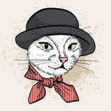 Vector color set of elegant cat woman face. Vector color sketch of elegant cat woman face with hat and scarf Royalty Free Stock Photography