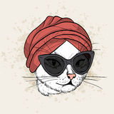 Vector color set of elegant cat woman face. Vector color sketch of elegant cat woman face with turban and glasses Stock Image