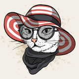 Vector color set of elegant cat woman face. Vector color sketch of elegant cat woman face with wide brimmed hat, sunglasses and scarf Royalty Free Stock Photos