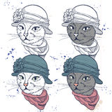 Vector color set of elegant cat women face Stock Image