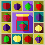 Vector color set illustration of different kinds of berries   Stock Images