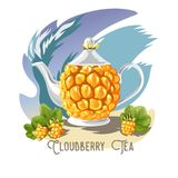 Vector color set of tea collection of Cloudberies and a teapot with the inscription. royalty free illustration