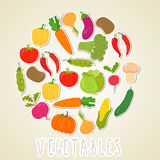 Vector color vegetables. Healthy lifestyle illustration. Circle Royalty Free Stock Image