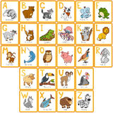 Vector color zoo alphabet with cute animals. Rectangular cards Royalty Free Illustration